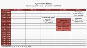 Tygodniowy rozkład zajęć - mgr Radosław Terlecki