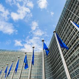 Szkoła Europejska online – program Europejskiej Akademii Dyplomacji